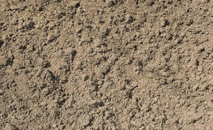 افضل انواع التربة للزراعة