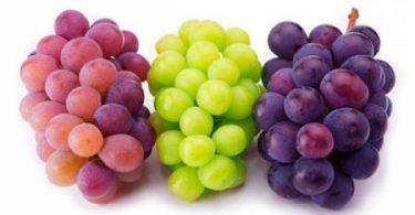 أفضل أنواع العنب