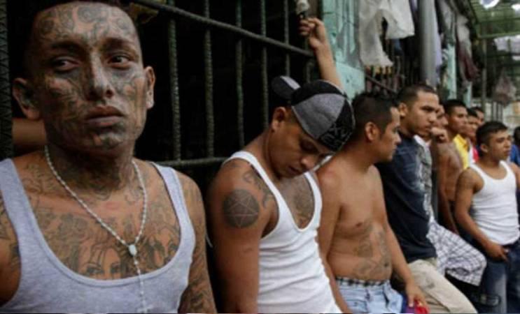 حرب العصابات في سجون البرازيل