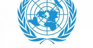 العمل في الامم المتحدة