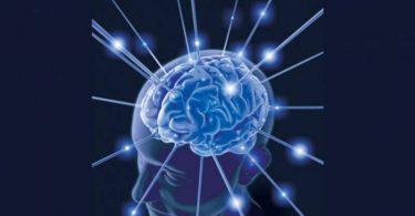 أفضل أنواع الزبيب لتقوية الذاكرة