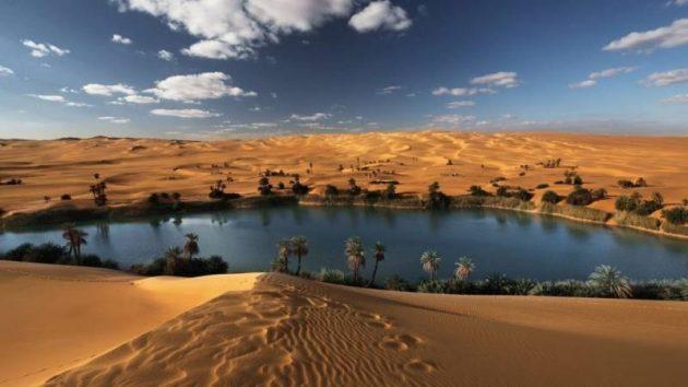 أحاديث عن جزيرة العرب