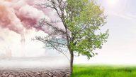 لماذا يعد التلوث مدمر للعالم