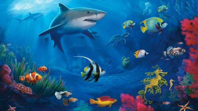 أي تركيب يسمح للأسماك بالتحكم في عمق غوصها