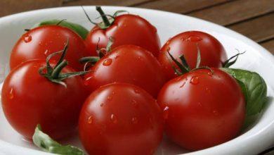 كم سعرة حرارية بالطماطم